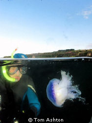 My friend Tommy inspecting a Blue jellyfish. St Andrews. ... by Tom Ashton