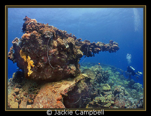 Bow gun on the Fujikawa Maru. Canon Ixus , fisheye lens ... by Jackie Campbell