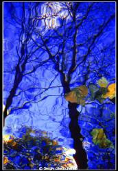 Autumn motive by Sergiy Glushchenko