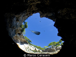 tremiti islands- grotta delle viole by Marco Caraceni