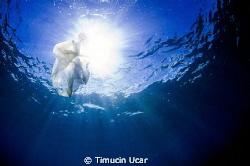 North Cyprus by Timucin Ucar