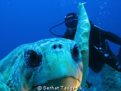 caretta with my buddy   