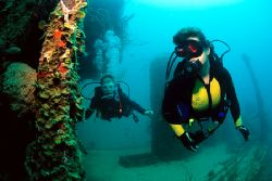The Prince Albert, Roatan. This shore dive helped burn ma... by Ian Brooks