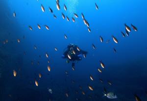 My friend Jan with fish by Veronika Matějková