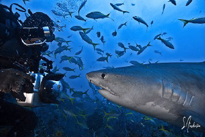 My friend Jim Abernethy gets up close and personal to get... by Steven Anderson