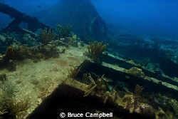 Wreckage from the RMS Rhone by Bruce Campbell