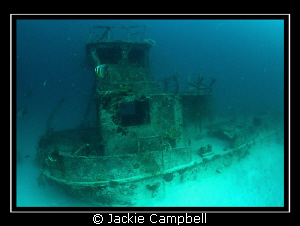 Tug boat wreck in the Maldives. MWB, Fisheye lens and Ca... by Jackie Campbell