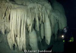 Diver in cenote Kinha Puerto Morelos by Javier Sandoval