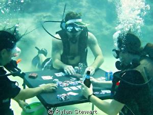 Card Sharks by Rylan Stewart