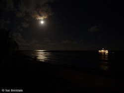 The Utila Aggressor II at Rocky Point under a full moon by Susan Beerman