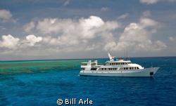Osprey Reef, Coral Sea. by Bill Arle