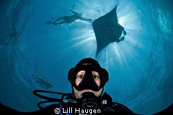 Shooting a self portrait while diving and snorkeling with... by Lill Haugen