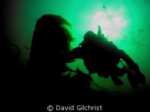 Diver silhouette, Niagara River by David Gilchrist