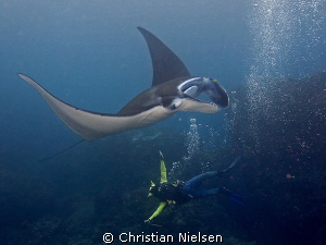 Happiness :-). My friend Made with a friendly manta ray o... by Christian Nielsen