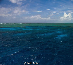 Osprey Reef, Coral Sea. by Bill Arle
