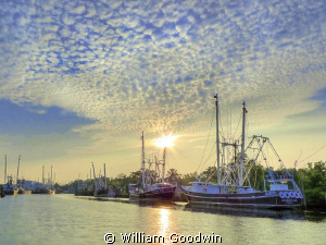 Shrimpers idled by the BP Oil Spill at Bayou la Batre in ... by William Goodwin