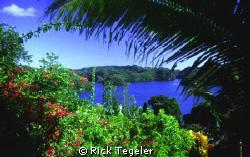 Palau by Rick Tegeler