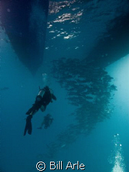 Divers and trevally under the boat.  Coral Sea.  Canon G-10 by Bill Arle