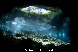 Cenote chacmool amazing light entrance by Javier Sandoval