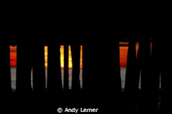 Sunset from underneath the pier by Andy Lerner