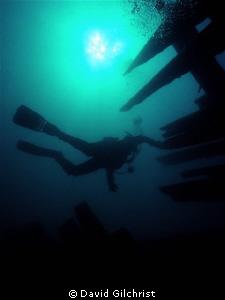 Diver Silhouette, Fathom Five National Marine Park, Tober... by David Gilchrist