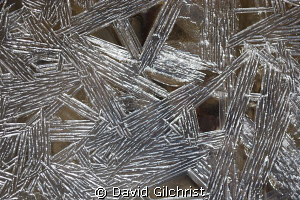 Ice Crystals, Was photographing some divers at the Wellan... by David Gilchrist