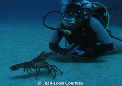 ''You come here often?!'' by Jean-Louis Courteau