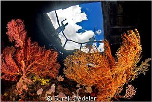 Hi there! by Burak Dedeler