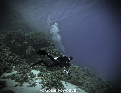 Going down to the blue, to make an underwater film. by Gosia Nowodyla