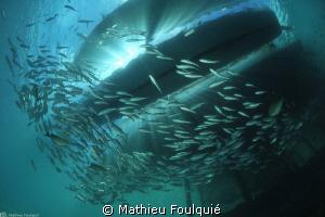 under jetty by Mathieu Foulquié