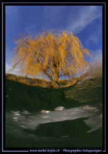 Winter lake diving atmosphere... Que du bonheur... :O)... by Michel Lonfat