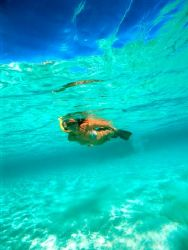 Cristal clear waters in southern Red Sea - Nikon F100 - 1... by Viora Alessio