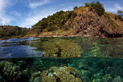 Apo Island, as beautiful above as below the surface. by Steve De Neef