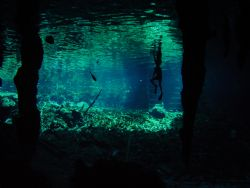 Grand Cenote, Tulum, Mexico by Christopher Hamilton