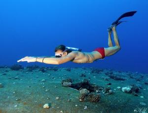Freediving at the Salem Express by Veronika Matějková