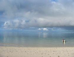 Summer storm, Warroora Station - Ningaloo Reef by Penny Murphy