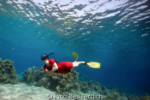 FreeDiving in the red sea. Canon 40D with Sigma 10-20mm. ... by Rico Besserdich