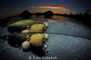 Evening pool of water...with rocks only mother nature cou... by Dale Kobetich
