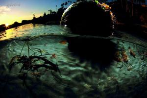 Mushroom Rock laguna beach by Dale Kobetich