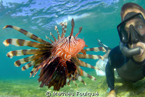 self portrait with the lionfish by Mathieu Foulquié