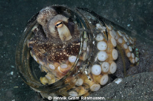 Octopus in a jar :) by Henrik Gram Rasmussen