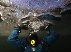 My buddy under ice by Veronika Matějková