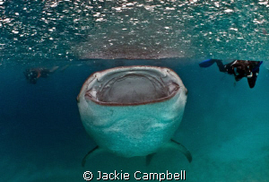 Hanifaru in the rain :)