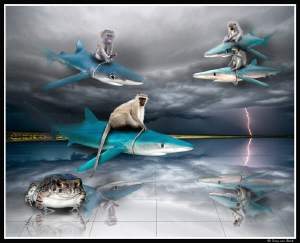 Blue riders on the storm... by Dray Van Beeck