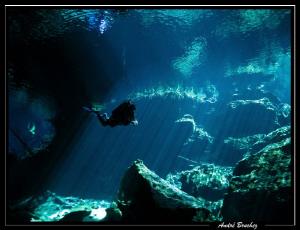 Plongée aux Cenotes... by André Bruchez