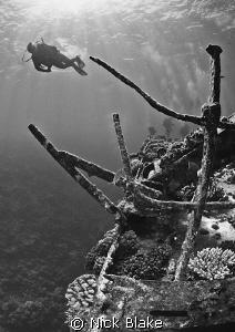A dive on Chrysoula K Nikon D300, Tokina 10-17mm. by Nick Blake