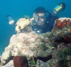 Key West Photographer on Patrol Sea & Sea MMIIEX dual Y... by Steven Whitehead