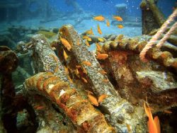 Thistlegorm, bow anchor winch. by Dan Ashkenasi