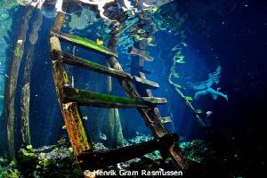 Grand Cenote entrypoint by Henrik Gram Rasmussen