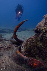 Old anchor & diver by Rico Besserdich